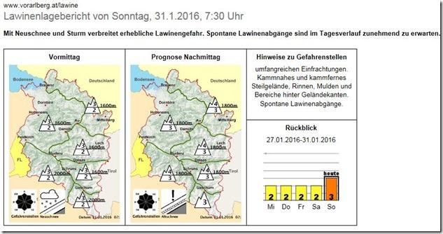 Vorarlberg_lawine